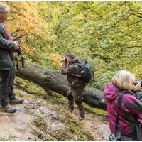 Herbstliche Fotoexkursion / Foto: Klaus Holstein