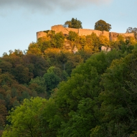 Herbstliche Fotoexkursion / Foto: Thomas Muth
