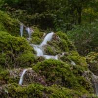 Herbstliche Fotoexkursion / Foto: Petra Gertitschke