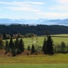 Allgäuer_Alpen_bei_Eschach