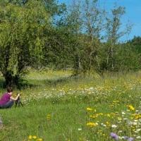 Botanischer Garten 2019 - Ralf Avak