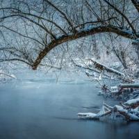 Winterimpression / Peter Jansen