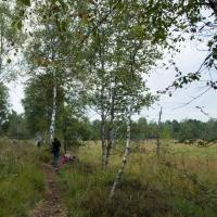 Natur und Kultur - Vereinsausflug 2015 / Foto Karin Garcia