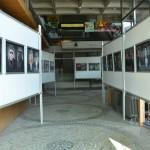 Ausstellung Mensch und Hund, Rathausfoyer Laupheim